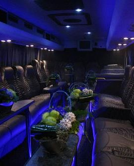 Vip bus arrangement